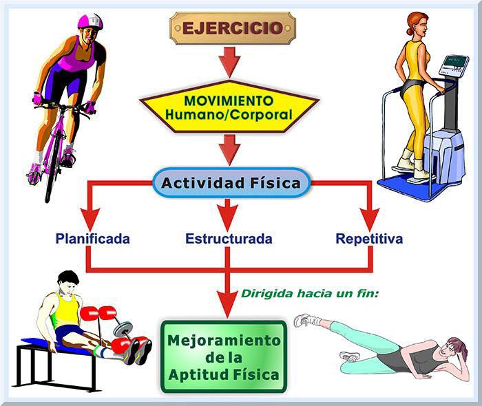 Actividad Física Delineamientos 2016 Edgar Lopategui Corsino