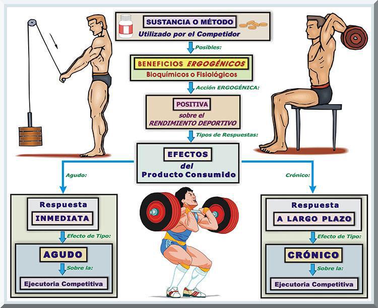 esteroides y sus efectos en la salud